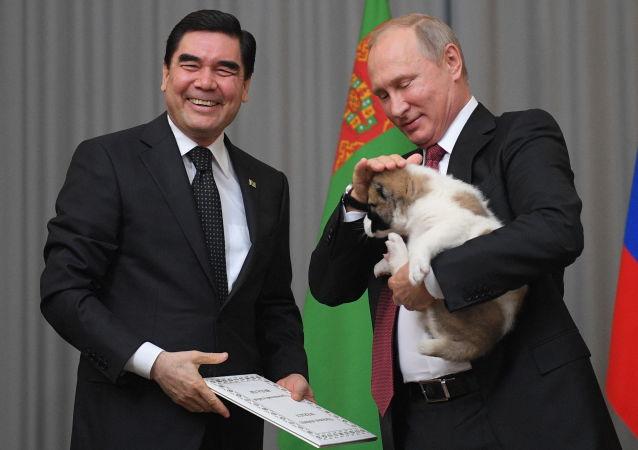 هنأ رئيس تركمانستان غوربانغولي بيرديموحيدوف نظيره الروسي فلاديمير بوتين في عيد ميلاده الـ 65 وأهداه جروا من فصيلة الأباي يدعى فيرني والذي يعني باللغة الروسية الوفي.