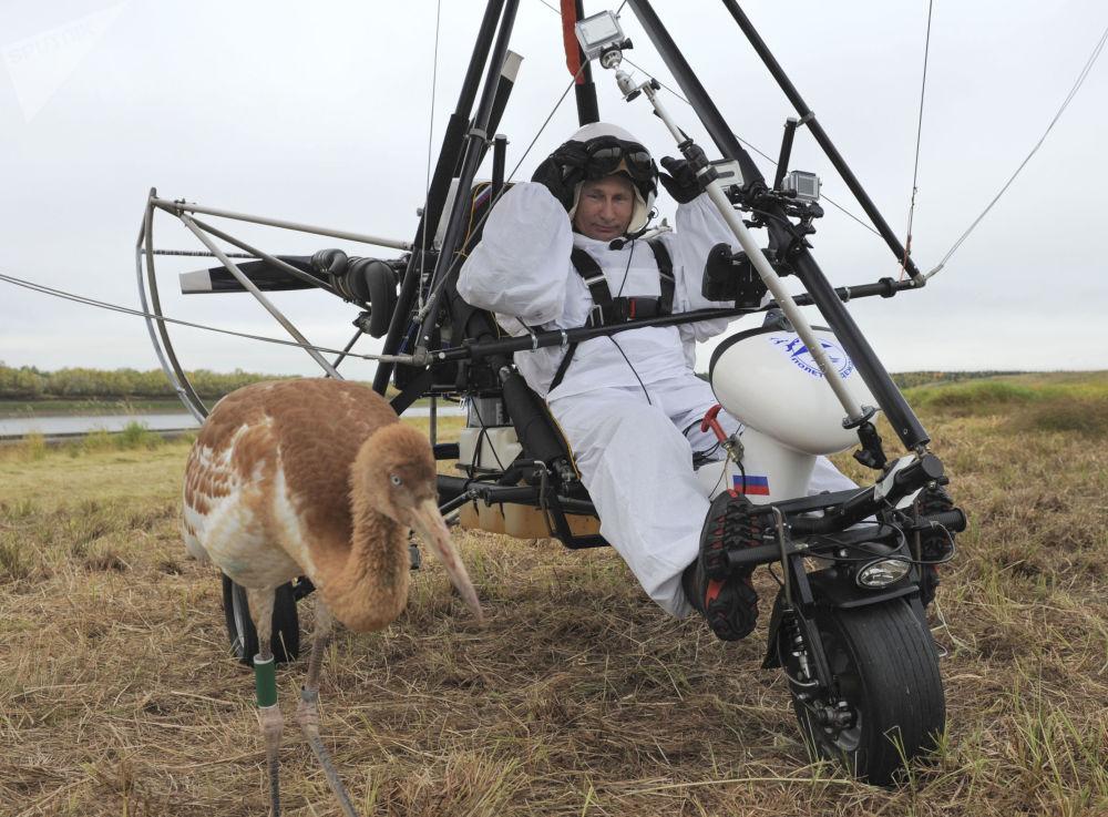 الرئيس فلاديمير بوتين يشارك في مشروع بيئي بوليوت ناديجدي (علو الأمل)، روسيا