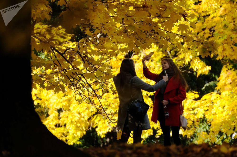 فتيات تلتقطن صور على خلفية خريف ذهبي بالحديقة العامة كالومينسكي في جنوب موسكو