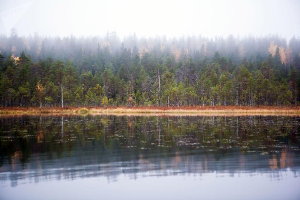 بحيرة تولفويلرفي في جمهورية كاريليا، روسيا
