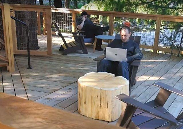 مايكروسوفت تبني مكاتب على الشواطئ وأغصان الشجر (فيديو)