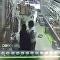 اعتداء شاب يمني على سعودي