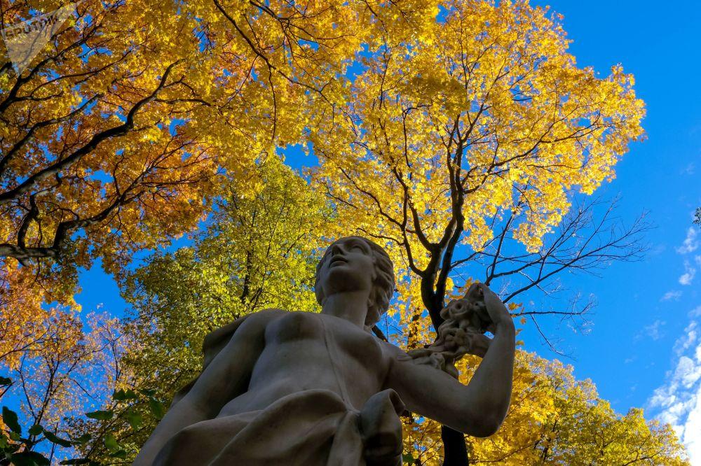 تمثال في حديقة ليتني ساد (الحديقة الصيفية) في سان بطرسبورغ