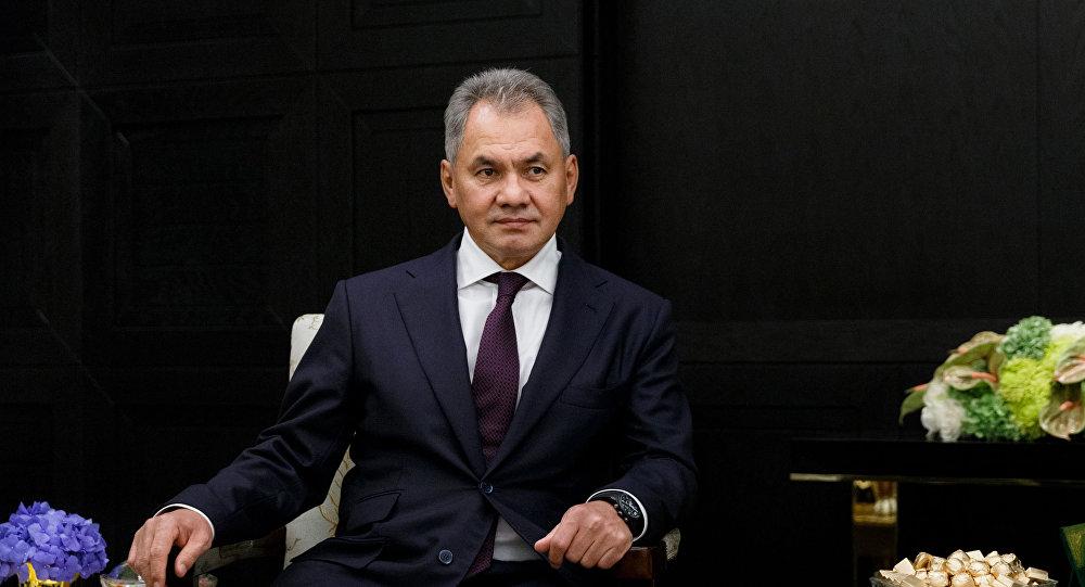 وزير الدفاع الروسي شويغو