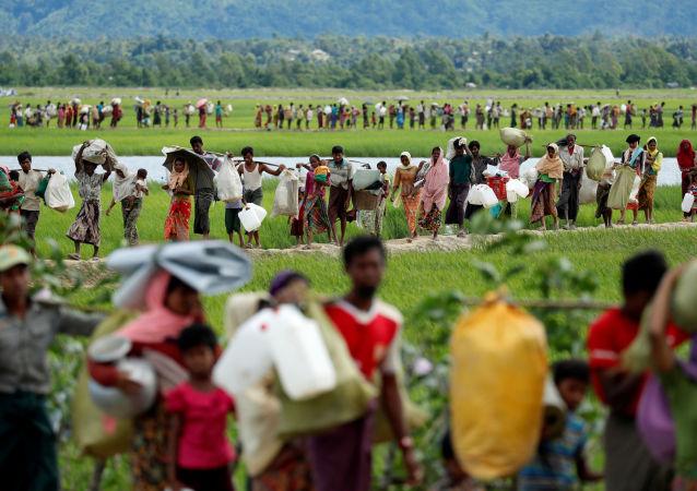 لاجئو الروهينغا، بنغلادش 24 أكتوبر/ تشرين الأول 2017