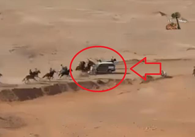 توثيق لحظة تصادم مروعة بين خيول في مضمار السباق وسيارة