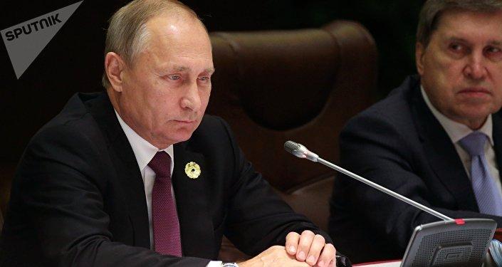 الرئيس فلاديمير بوتين في قمة إبيك، 10 نوفمبر/ تشرين الثاني 2017