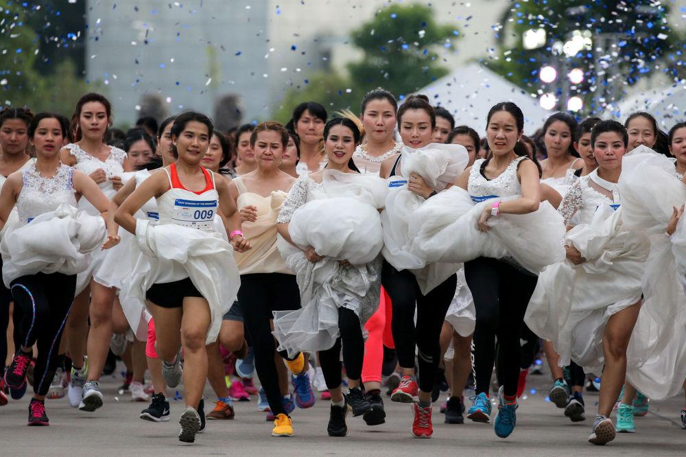 سباق العرائس في بانكوك، تايلاندا 2 ديسمبر/ كانون الأول 2017