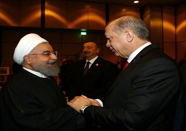 الرئيس التركي رجب طيب أردوغان والرئيس الإيراني حسن روحاني في اسطنبول، تركيا 13 ديسمبر/ كانون الأول 2017