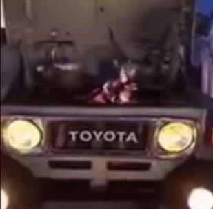 شباب يصنعون الشاي في محرك السيارة