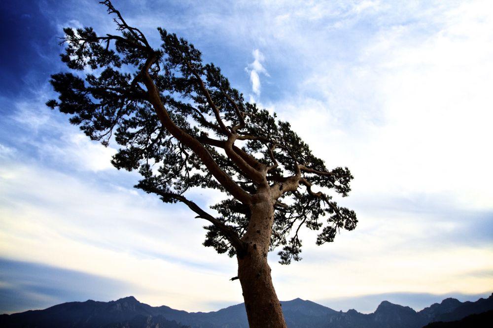 الحديقة الوطنية سيوراكسان في كوريا الجنوبية