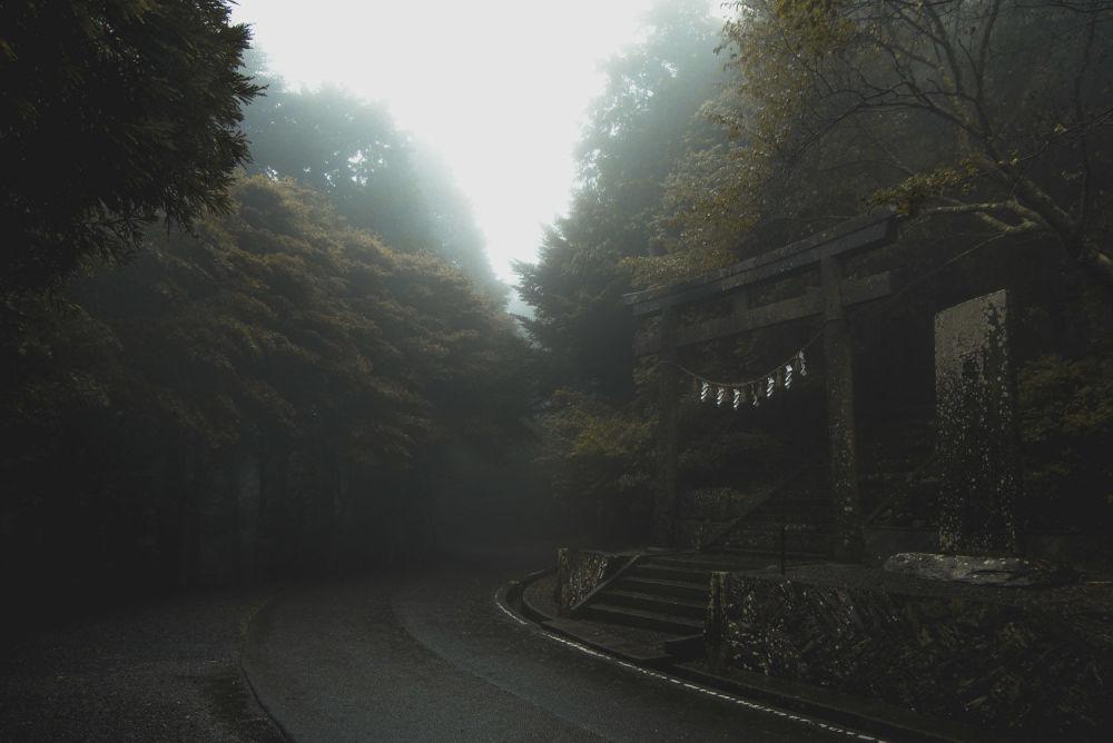 اليابان - المصور إجوزياه هادلستون الفائز في فئة مصور الرحلة اليافع - كاميرتي، رحلاتي
