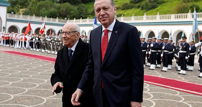 أردوغان والسبسي