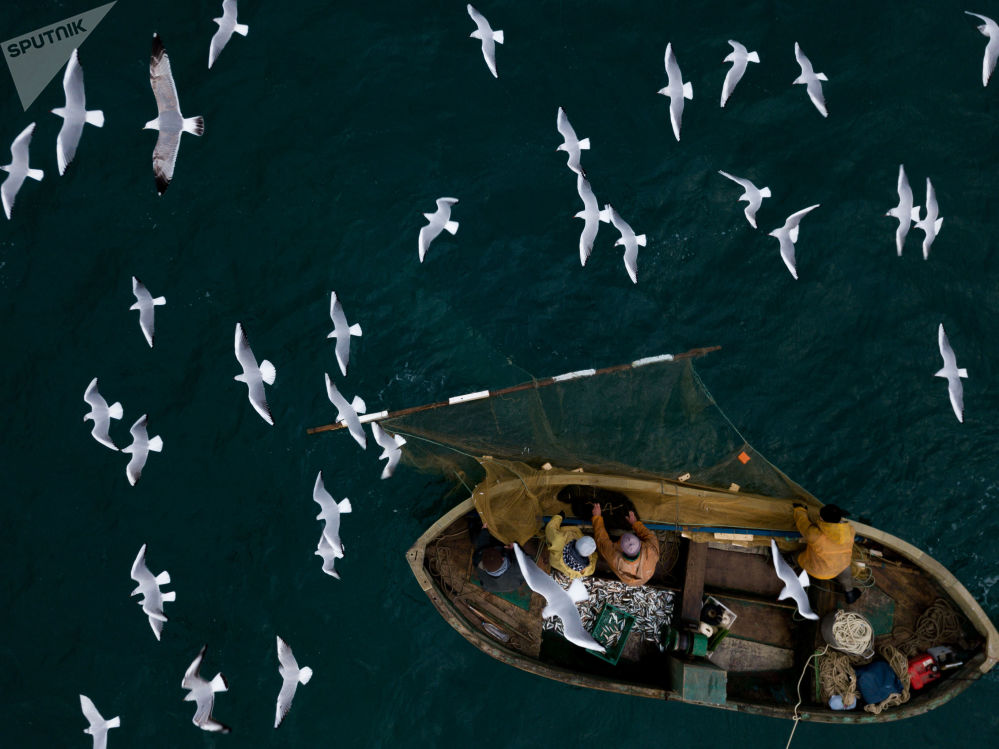 الصيادون وقت الصيد قبالة سواحل سيفاستوبل، القرم