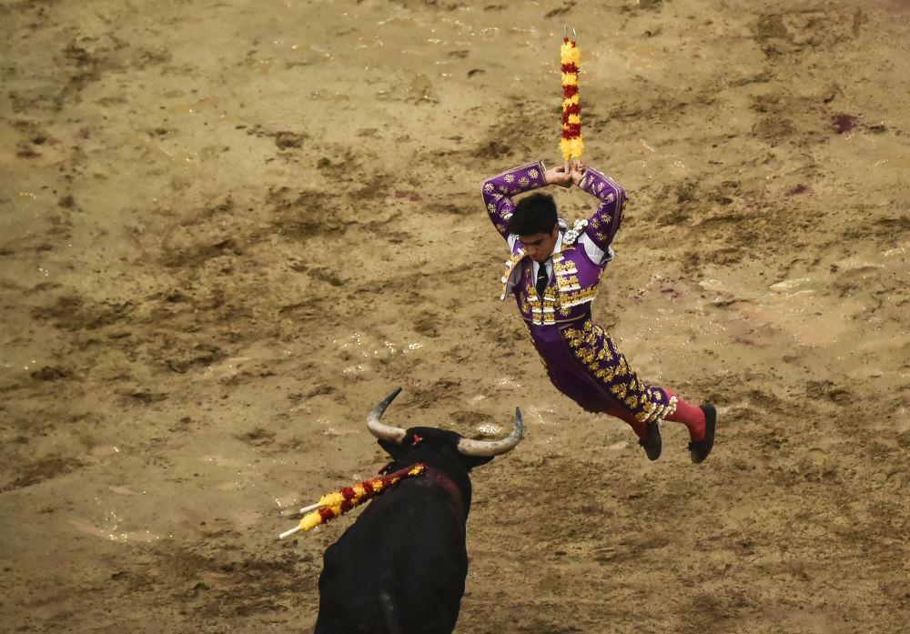 مصارع الثيران الفنزويلي جيسوس إنريكي كولومبو خلال مصارعة الثور في حلبة كانافيراليجو في كالي، كولومبيا 26 ديسمبر/ كانون الأول 2017