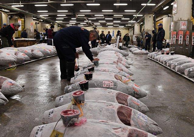 سوق تسوكيجي للمنتجات البحرية في العاصمة اليابانية طوكيو