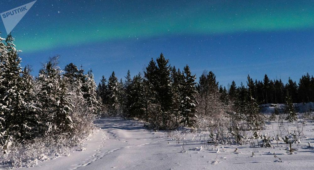 الشفق القطبي على مقربة من قرية لوفوزيرو في منطقة مورمانسك