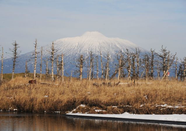 بركان تياتيا، وهو بركان نشط في جزيرة كوناشير لمحمية الكوريل الطبيعية