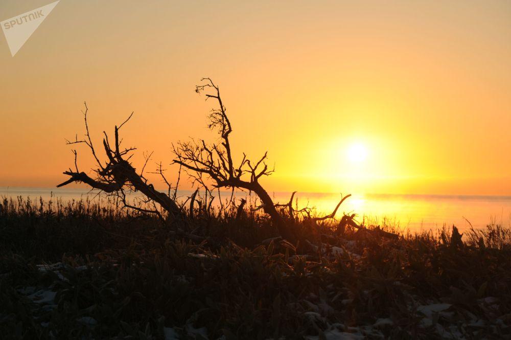غروب الشمس على ساحل جزيرة كوناشير لمحمية الكوريل الطبيعية