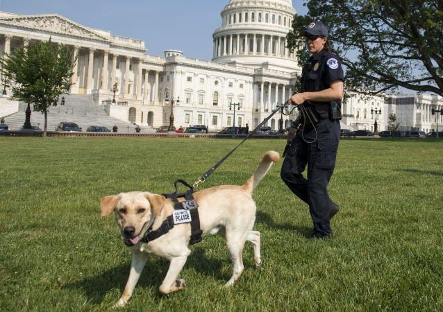 شرطية أمريكية في واشنطن