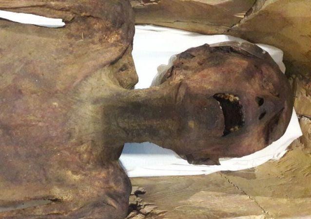 صراخ مومياء يعتقد أنها لابن الملك رمسيس الثالث من عصر الأسرة 20