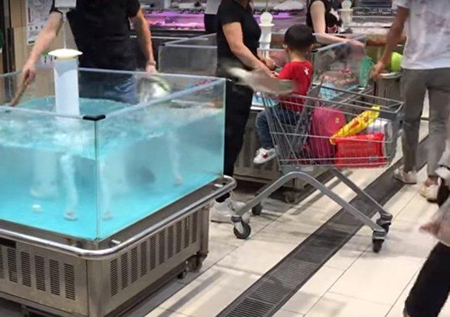 سمكة تقفز في عربة تسوق في الصين