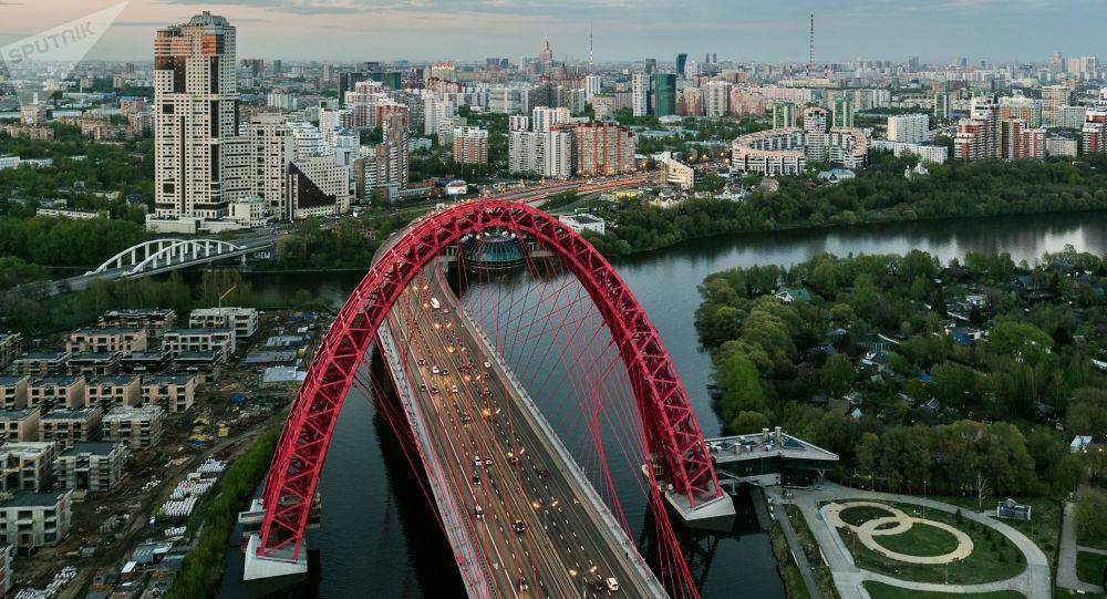 جسر جيفوبيسني (فني) في موسكو