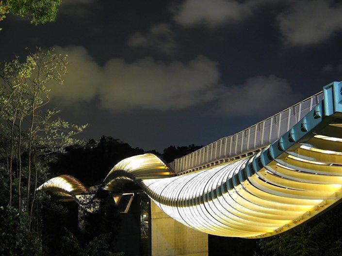جسر أمواج هاندرسون في سنغافورة