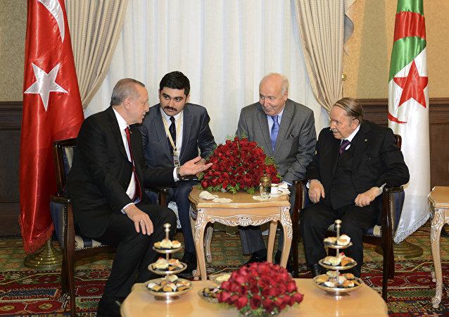أردوغان في الجزائر