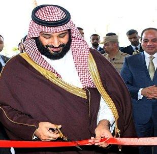 محمد بن سلمان أثناء زيارته للقاهرة