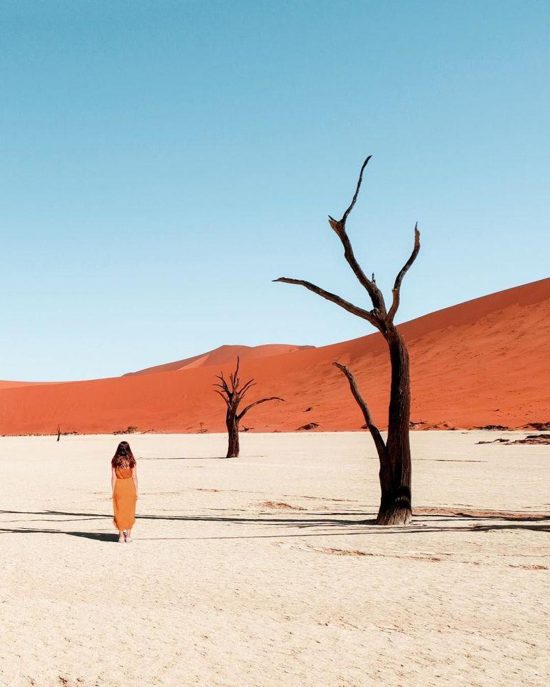 صورة للطبيعة في نامبيا لمشروع تصوير بعيدا عن البيت