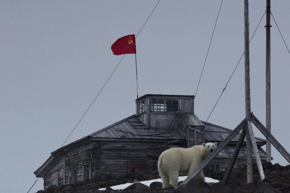 مسابقة أفضل تصوير في روسيا 2017 - صورة اليوبيل في القطب الشمالي للمصورة فيرا كوستامو