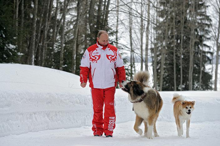 الرئيس الروسي فلاديمير بوتين يتنزه مع كلابيه