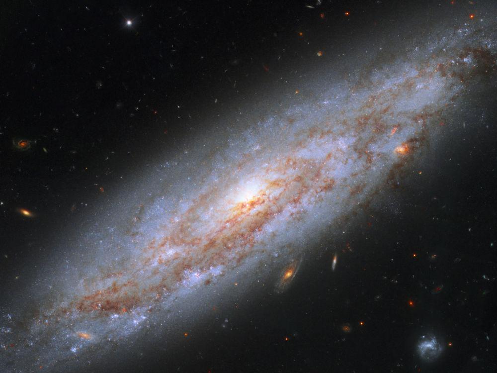 المجرة NGC 3972 في كوكبة الدب الأكبر