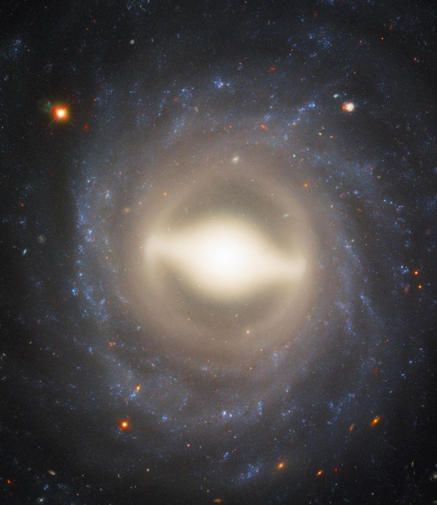 المجرة اللولبية NGC 1015 في كوكبة قيطس (الحوت) التي تبعد 118 مليون سنة ضوئية عن الأرض.