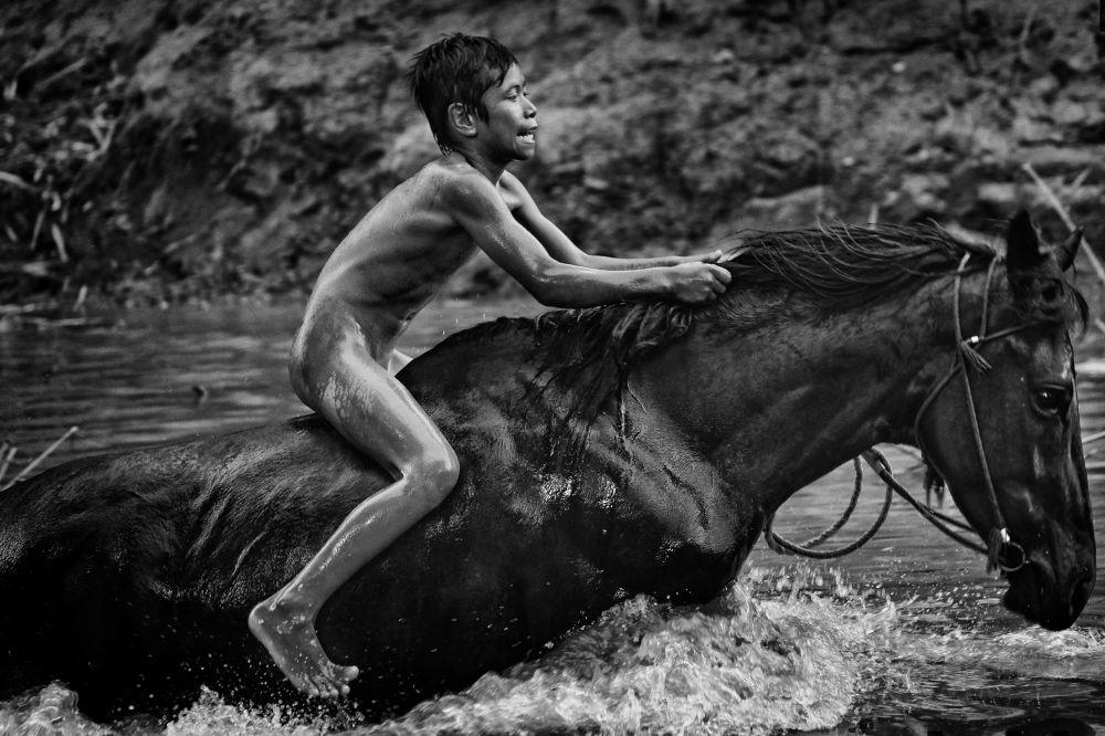 مسابقة صور الصحافة العالمية لعام 2018 - صورة بعنوان الأطفال الفرسان للمصور آلان شرويدر، الفائزة بالمرتبة الأولى في فئة التصوير أخبار الرياضة أطفال من 5 إلى 10 أعوام خلال سباقات الخيل التقليدية ماين جاران في إندونيسيا