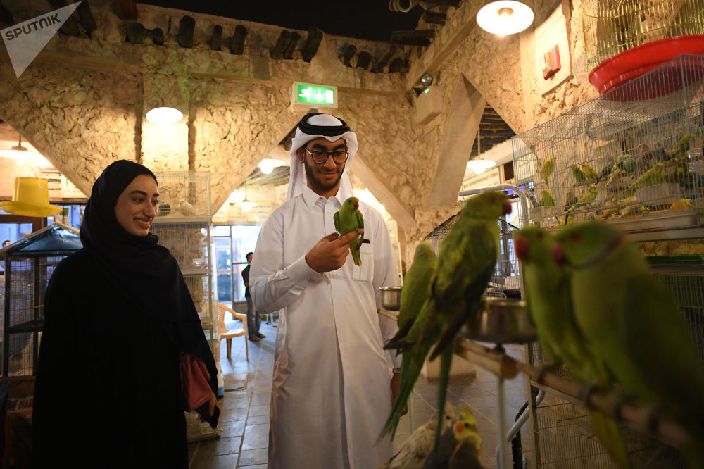 زوار في متجر للحيوانات الأليفة في سوق واقف في مدينة الدوحة، قطر