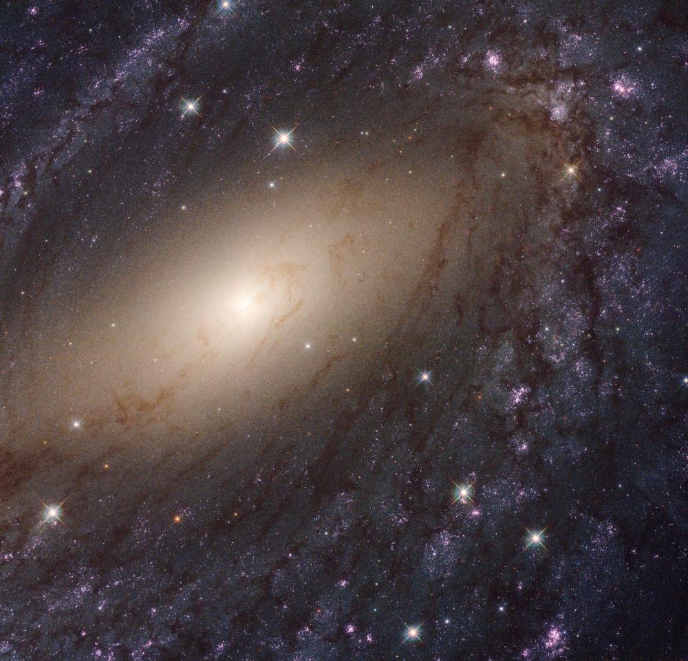 المجرة NGC 6744 في كوكبة الطاووس