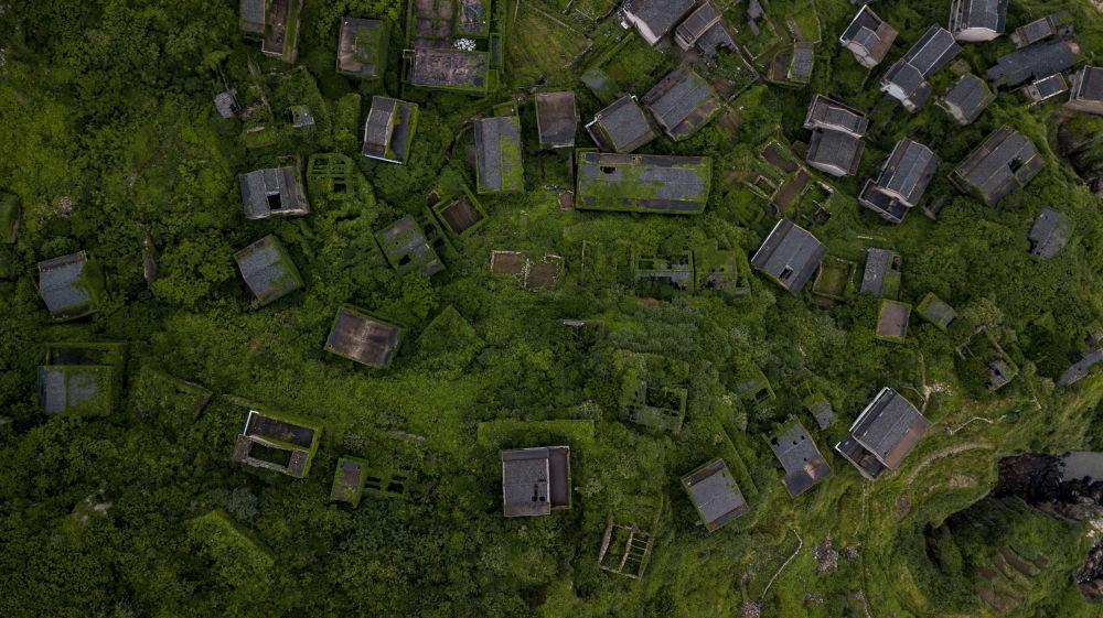 منازل مهجورة مغطاة بالنباتات الكثيفة في قرية هوتاون على جزيرة شينغشان بإقليم تشيجيانغ الشرقي الصيني، 31 مايو/ أيار 2018