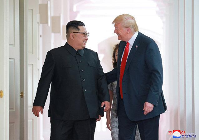 الرئيس الأمريكي دونالد ترامب وزعيم كوريا الشمالية كيم جونغ أون في لقائهما التاريخي في سنغافورة، 12 يونيو/حزيران 2018