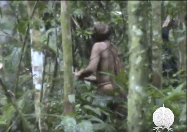ظهور طرزان الحقيقي في غابات الأمازون في البرازيل، 20 يوليو/تموز 2018