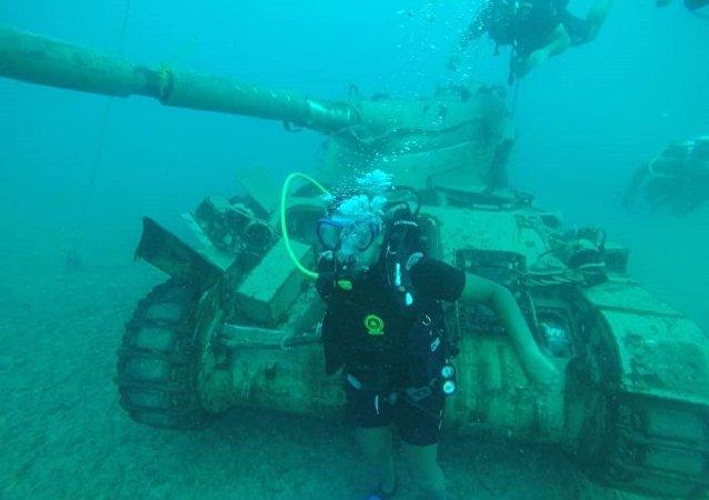حديقة عسكرية جنوب لبنان