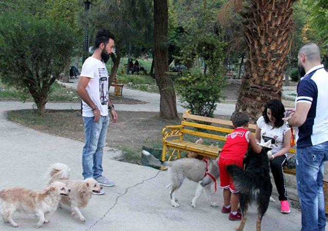 من الأرياف إلى حدائق دمشق... تربية الكلاب تنتشر في زمن الحرب