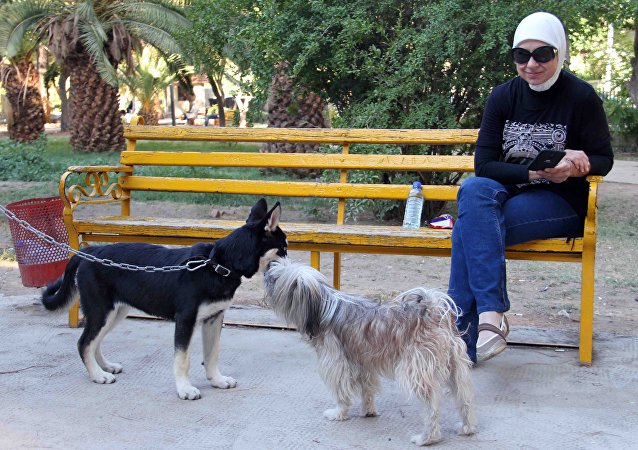من الأرياف إلى حدائق دمشق… تربية الكلاب تنتشر في زمن الحرب