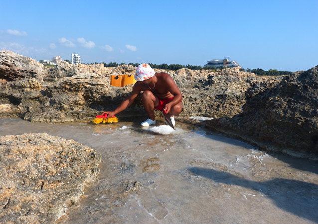 على هامش الحرب السورية...ملح البحر لمواجهة مرارة الحياة