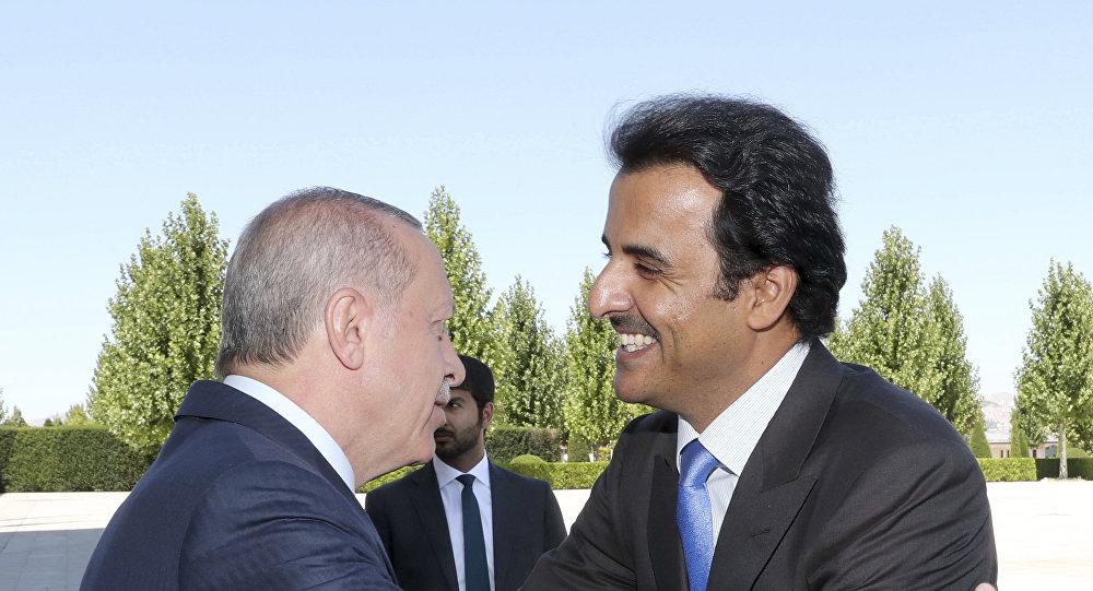 أمير قطر الشيخ تميم آل ثاني مع رئيس تركيا رجب طيب أردوغان