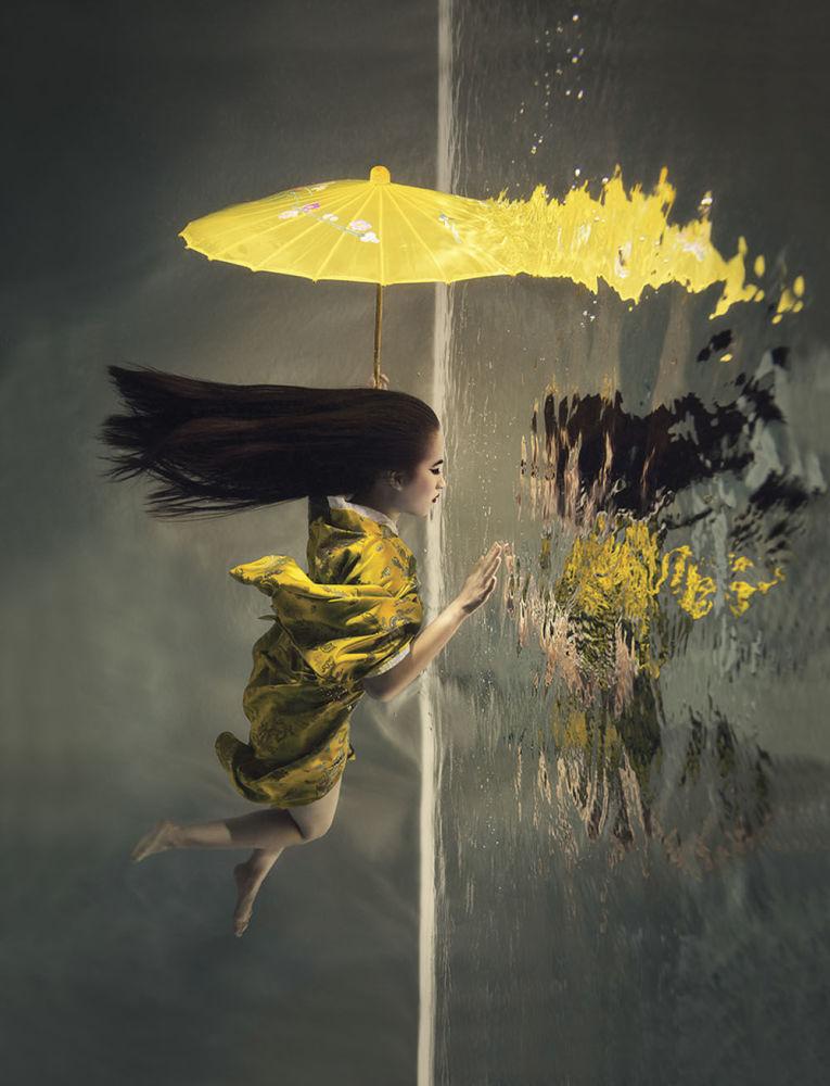 صورة للمصور لويس درليكوفا، الذي فاز بالمركز الثاني في فئة مفهوم لمجلة الصور تحت الماء لعام 2018