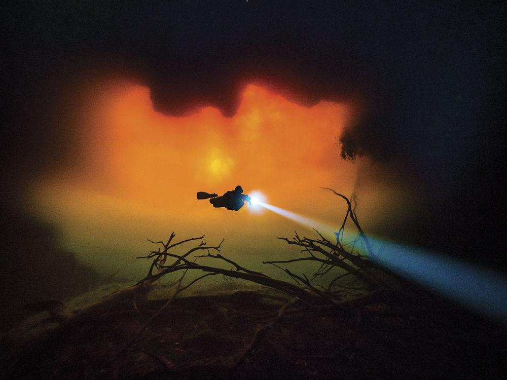 صورة للمصور توم ست. جورج، الذي فاز بالمركز الثالث في فئة الزاوية العريضة لمجلة الصور تحت الماء لعام 2018