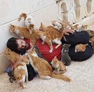 محمد علاء الجليل في محمية القطط في حلب