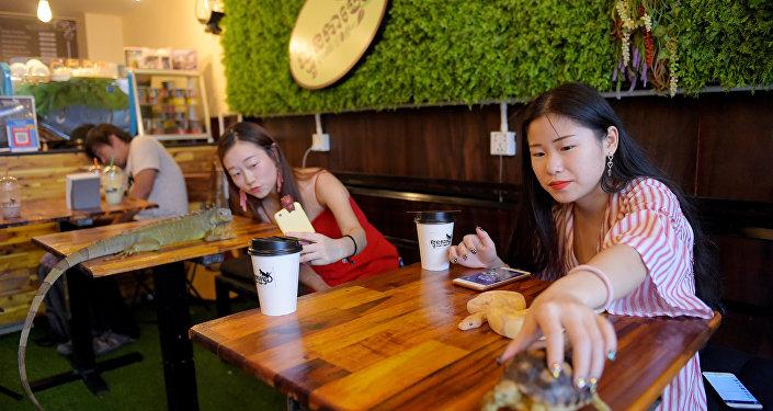 مقهى في كمبوديا يقدم خدمة مميزة مع الشاي و القهوة